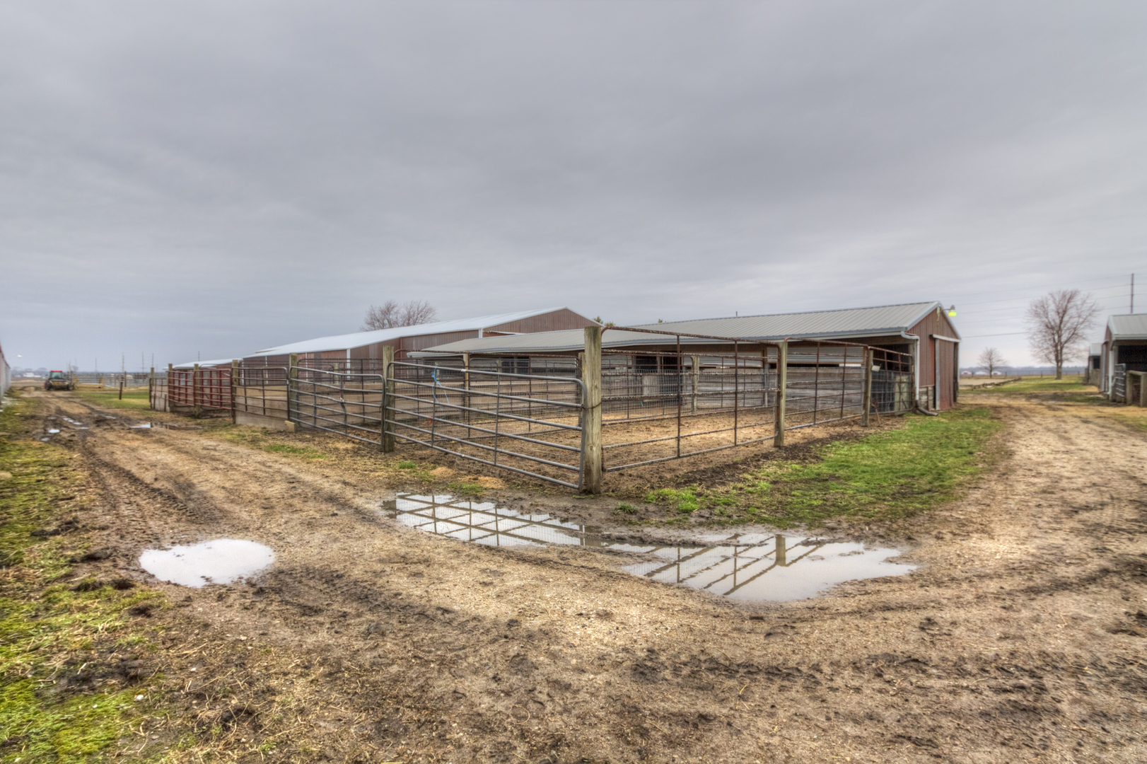 2455 County Road 1050 ,Homer, Illinois 61849