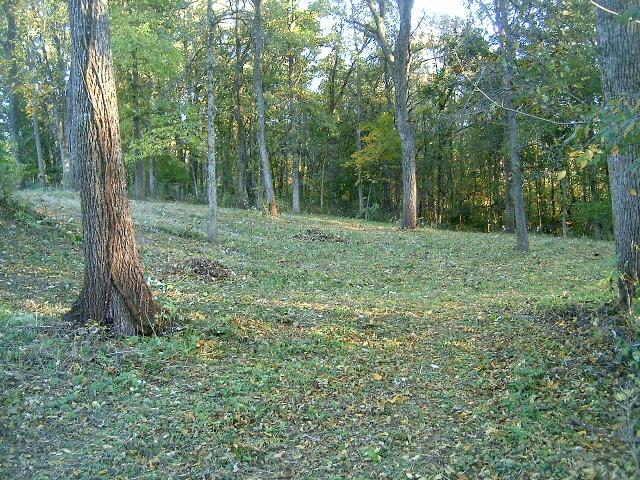 lot 5 Meyers ,Mount Carroll, Illinois 61053