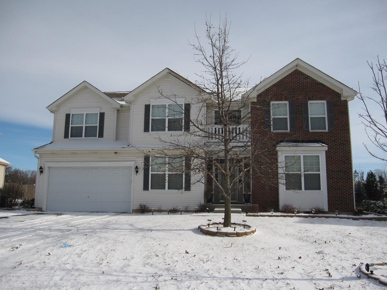 1459 Fox Path Lane, Hoffman Estates, IL 60192