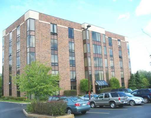7808 College Unit Unit 1sw ,Palos Heights, Illinois 60463