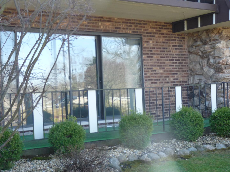 11125 O Gorman Unit Unit 2-1g ,Palos Hills, Illinois 60465