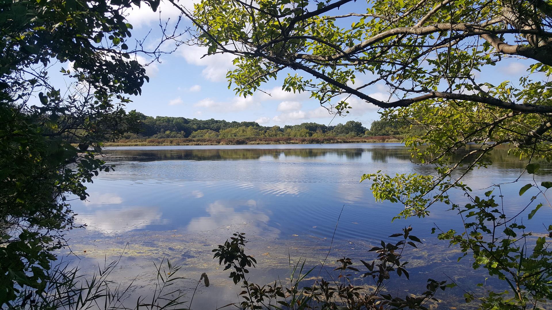 Wonder Lake, IL 60097