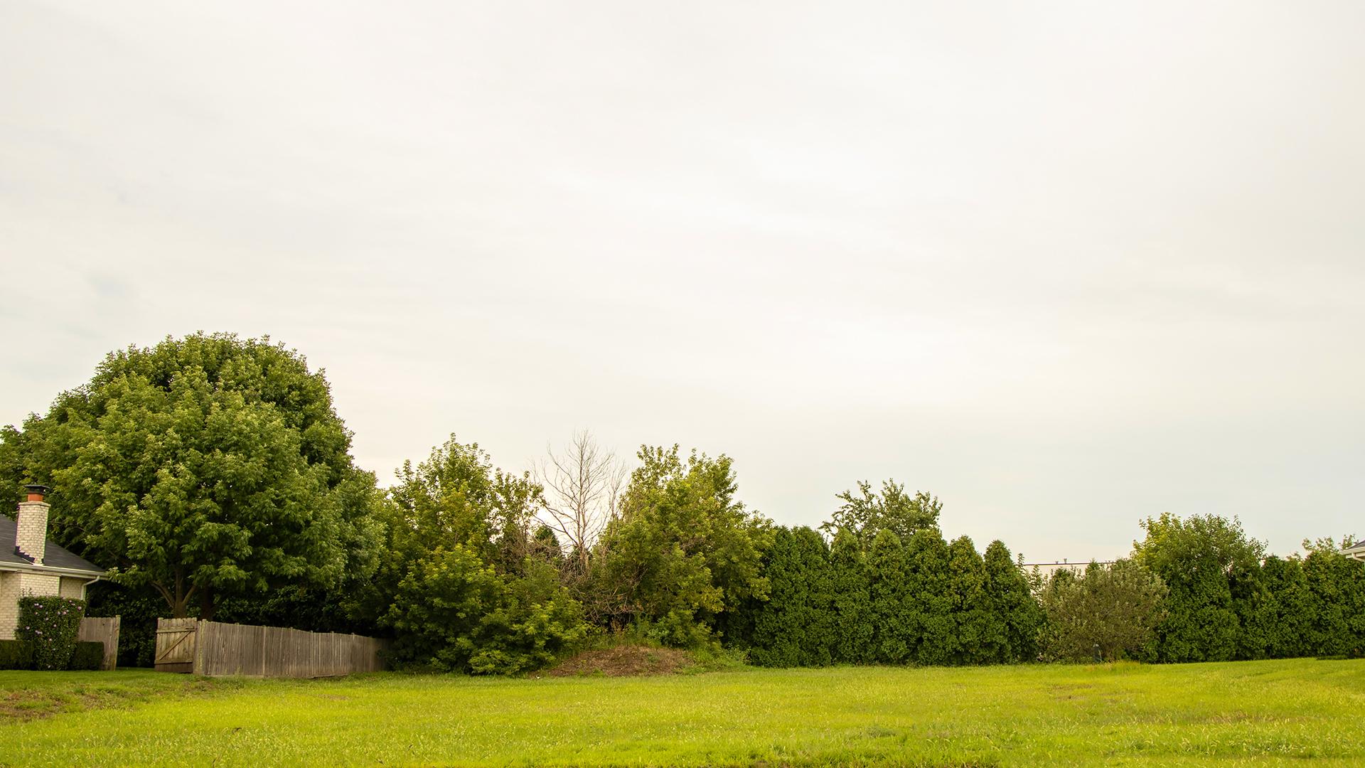 Photo of 8725 Black Oak Tinley Park IL 60487