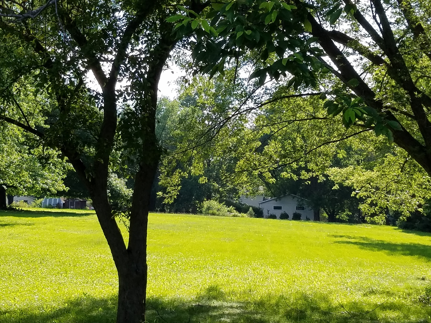 LOT 7 Hickory Nut Grove Rd, Cary IL 60013