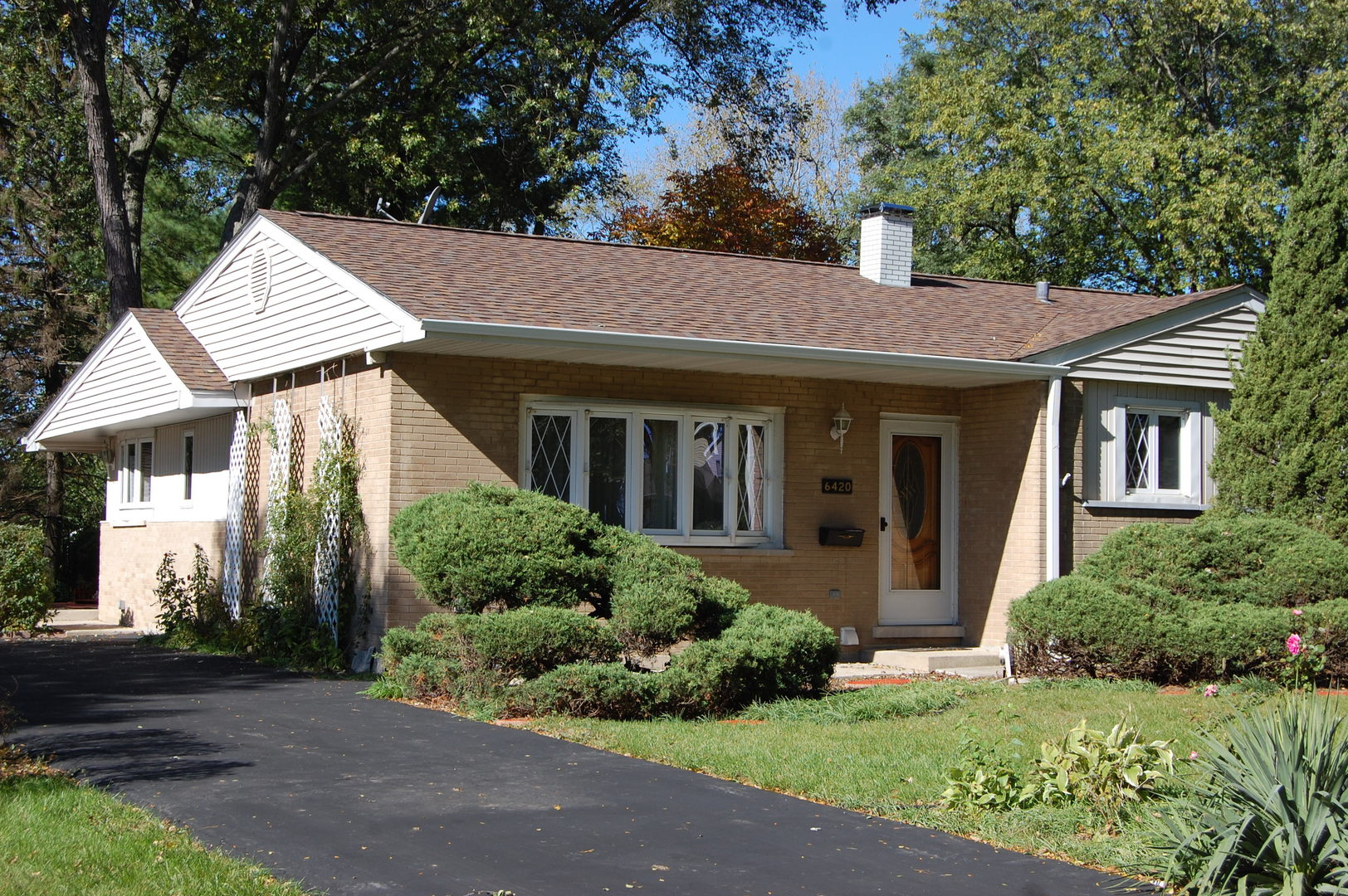 6420 POWELL STREET, DOWNERS GROVE, IL 60516