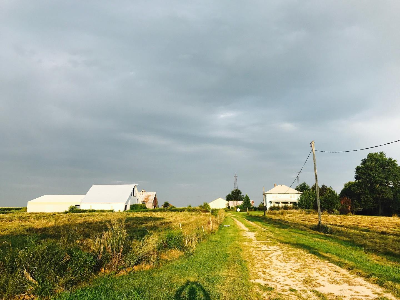 30795 NORTH 1700 EAST ROAD, BLACKSTONE, IL 61313  Photo 17