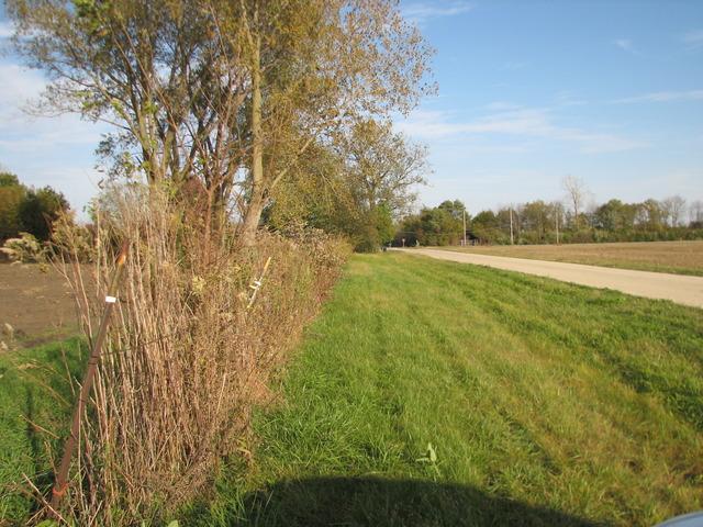 250 Smith ,Godley, Illinois 60407