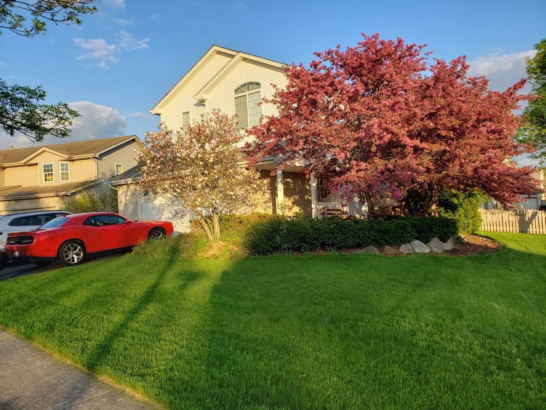 617 Coneflower ,Romeoville, Illinois 60446