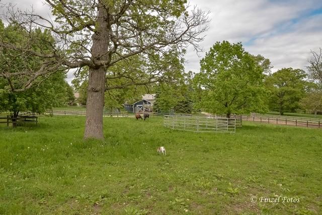 3s559 Norris ,Sugar Grove, Illinois 60554