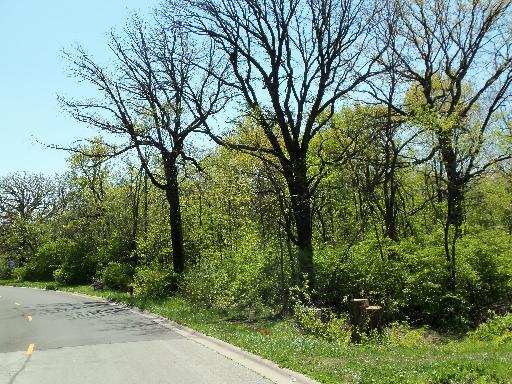 Lot #9 Oak Grove, Morris, Illinois 60450
