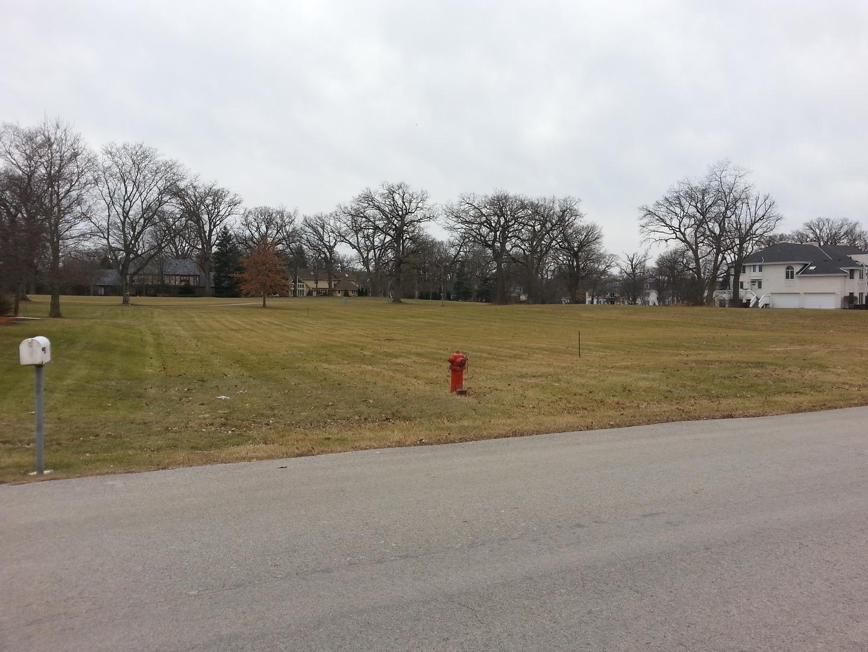 1003 Prestwick, Frankfort, Illinois 60423