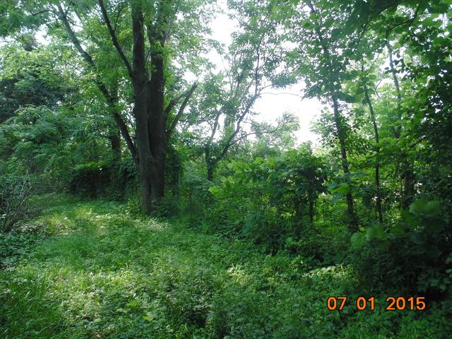 18552 Wolf, Mokena, Illinois 60448
