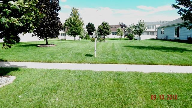 1439 Trailside, Beecher, Illinois 60401