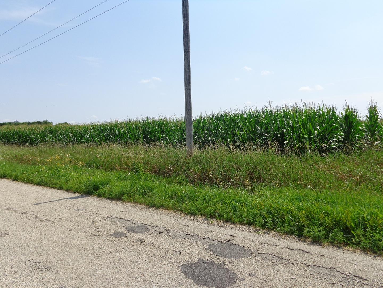 33N-14E W Kentucky Rd, Beecher IL 60401