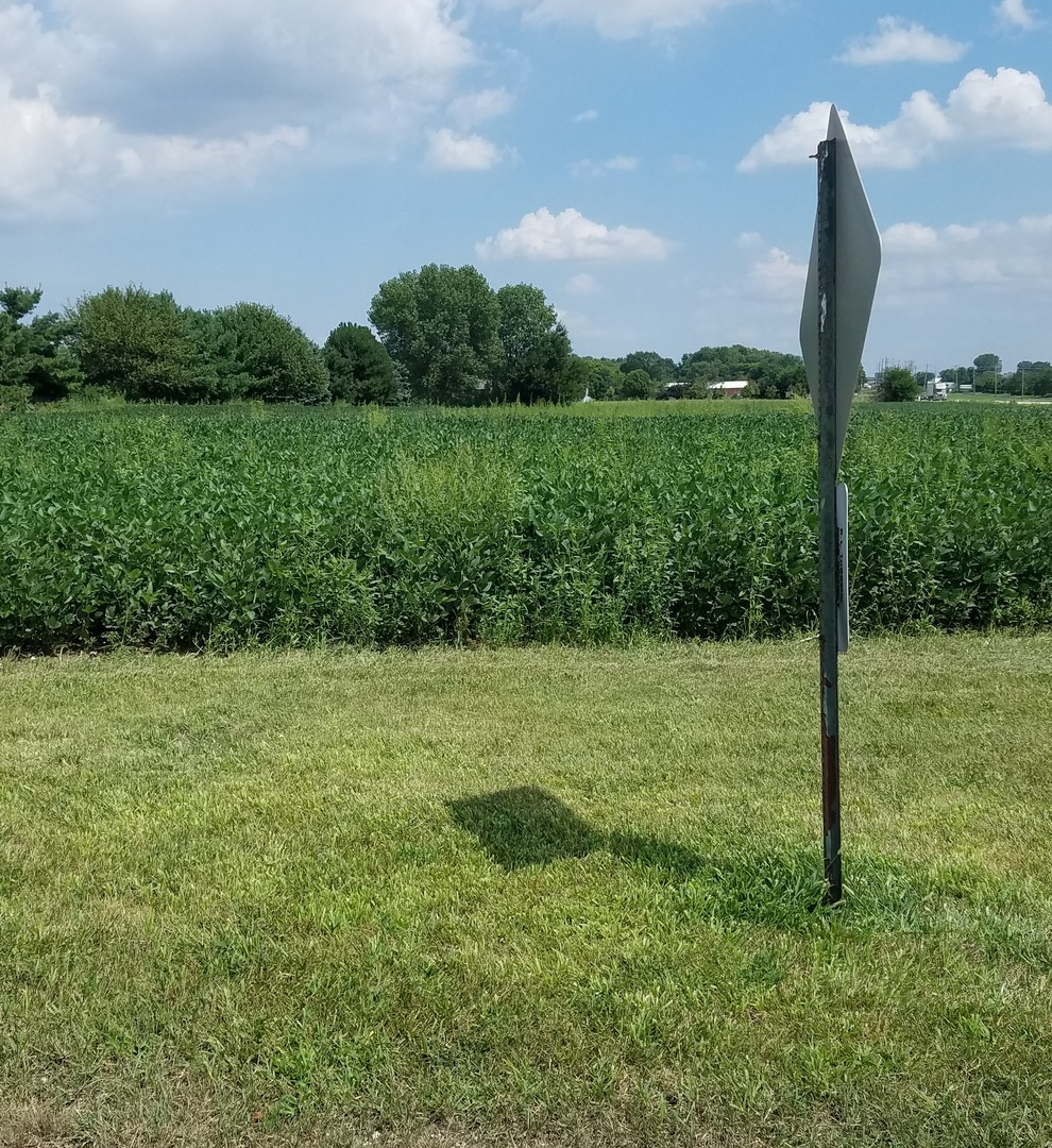lot d Laraway ,New Lenox, Illinois 60451