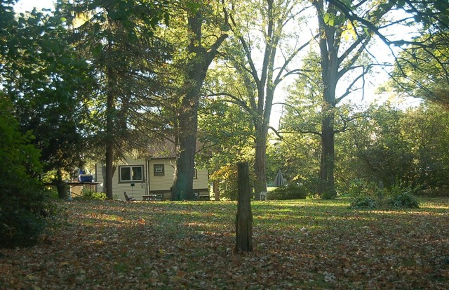 14951 Cicero Ave ,Oak Forest, Illinois 60452
